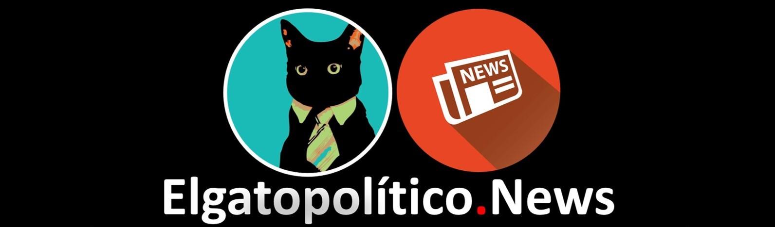 El gato político News
